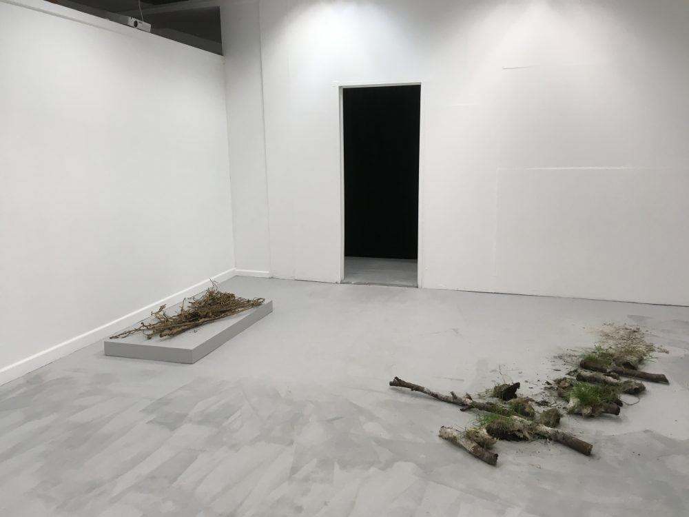 MA Installation/exhibition